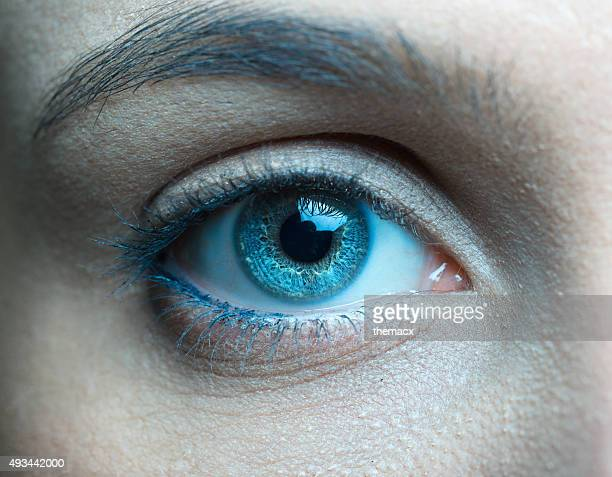 Human blue eye close up