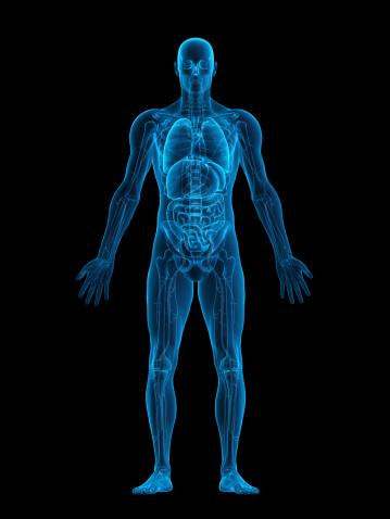 Human body X-ray 109722994
