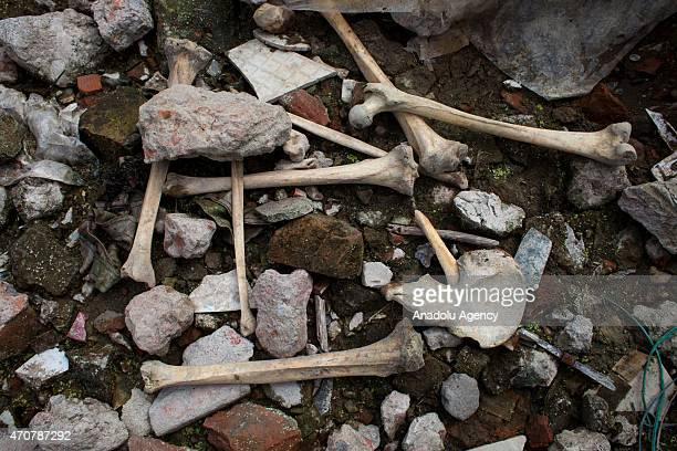 Human bones are seen at the site of Rana Plaza building collapse on the secondyear anniversary of the incident at Savar in Dhaka Bangladesh on April...