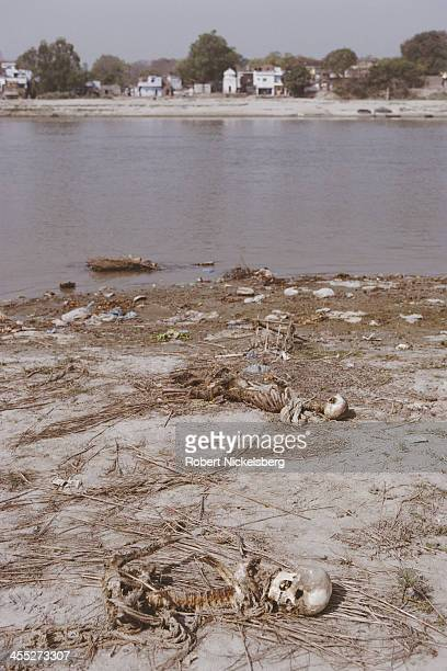 Human bones remain on the riverbank from bodies dropped into the Ganges River after cremation Kanpur Uttar Pradesh India April 1999