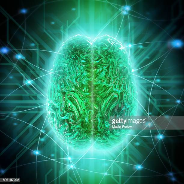human brain connection, conceptual artwork - human internal organ stock pictures, royalty-free photos & images