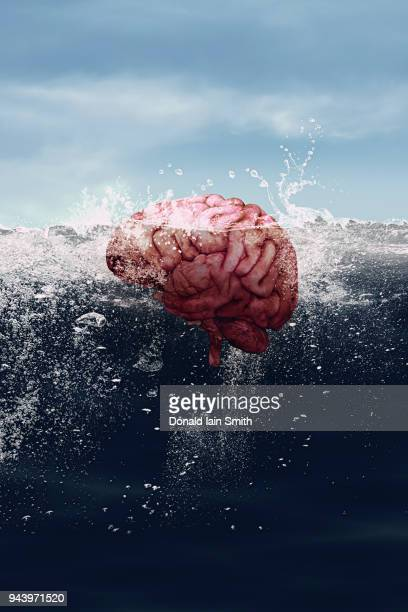 Human brain floating in the sea parts visible above and below the water