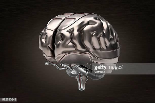 Human brain with armor