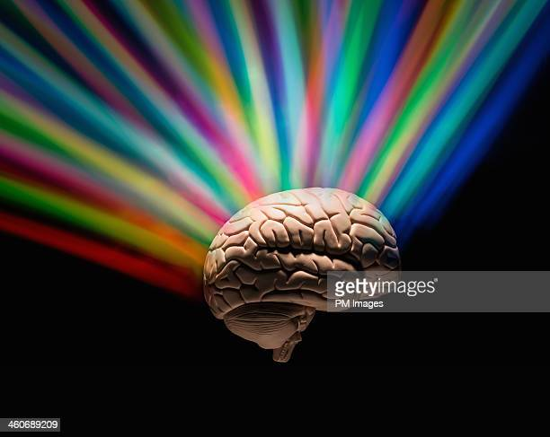 Human brain with rainbow colors