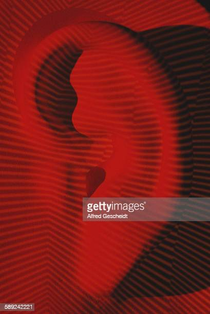 A human ear with a computerised grid superimposed over it 1990
