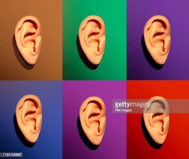 human ears on different colors - rumor stock pictures, royalty-free photos & images