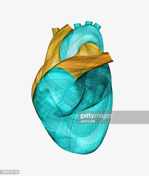 Human Energy Heart