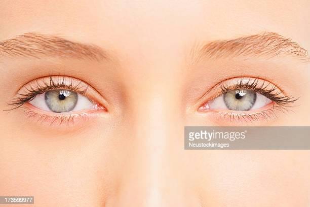 Menschliches Augen