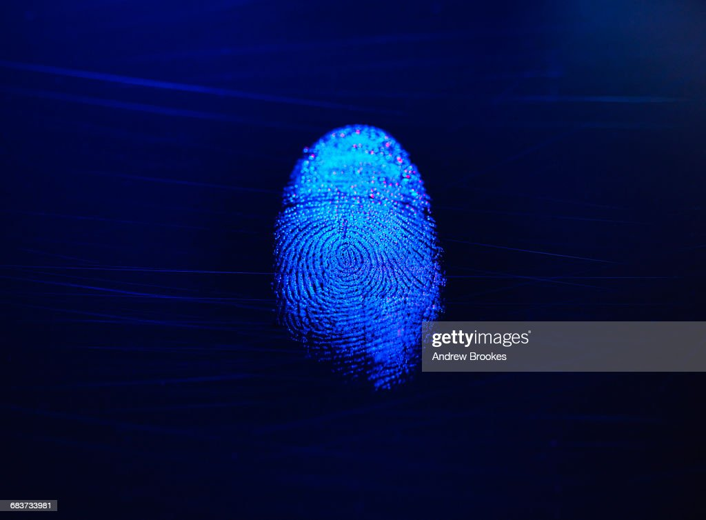 Human finger print as evidence of identity and as a password : Stock Photo