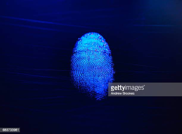 human finger print as evidence of identity and as a password - forense fotografías e imágenes de stock