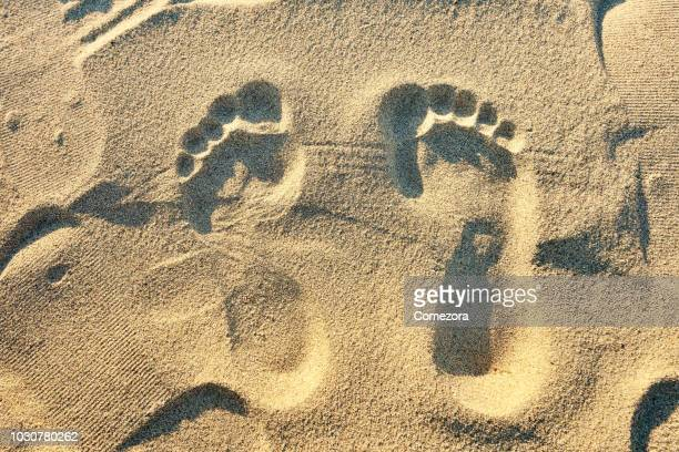 human footprint on the sand - sandig stock-fotos und bilder
