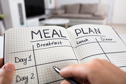Human Hand Filling Meal Plan In Notebook 922112456