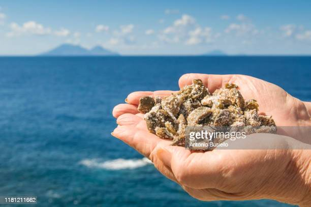 human hand full of salty capers - aeolian islands stock pictures, royalty-free photos & images