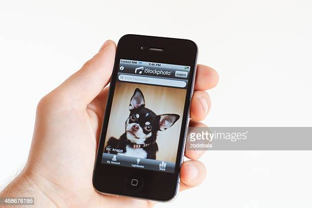 human hand holding iphone 4 with istockphoto application - istock_photo stock pictures, royalty-free photos & images