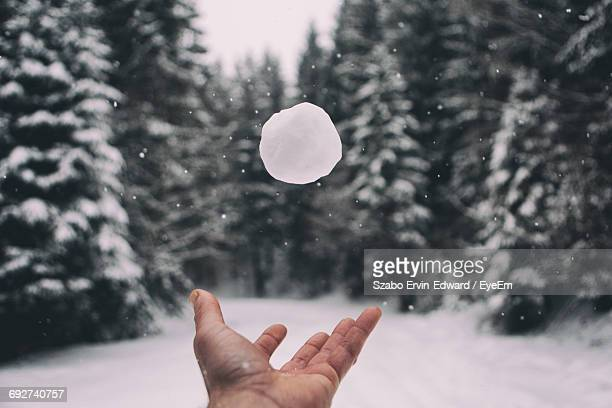 human hand throwing snowball against trees - lanciare foto e immagini stock