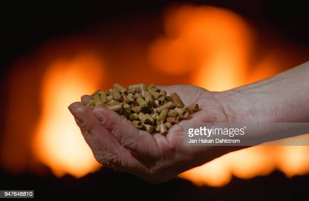 human hand with pellets in front of fireplace - grânulo imagens e fotografias de stock
