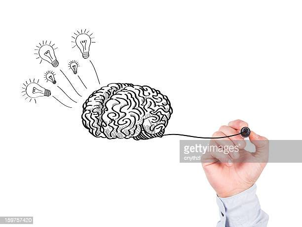 human hand writing brain on whiteboard - possible stock pictures, royalty-free photos & images