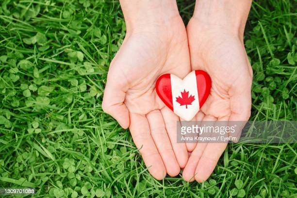 human hands holding round badge with canadian flag symbol. canada day national celebration - canada day stock pictures, royalty-free photos & images