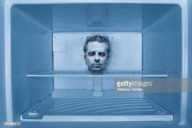 human head in freezer - cannibalism stock photos and pictures