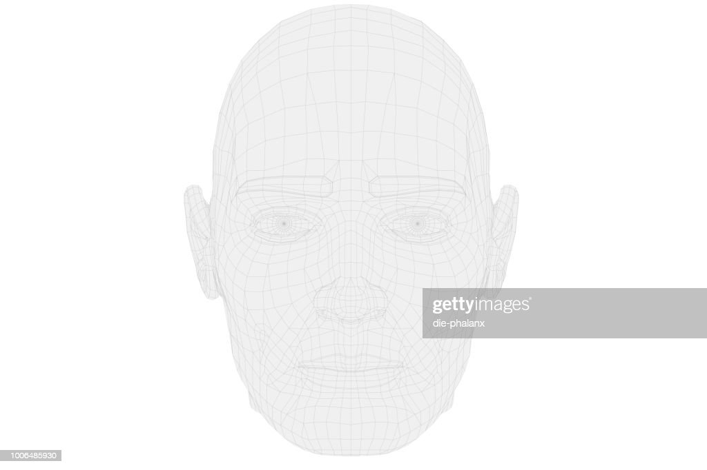 Human head in wireframe with front view on white background. : Stock Photo