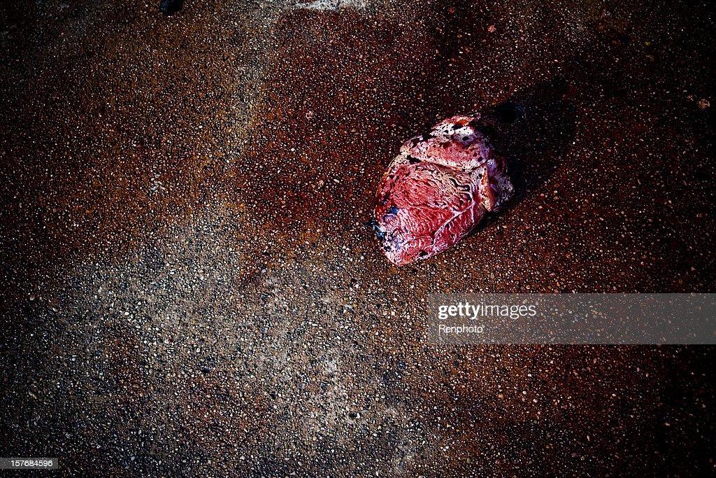 Human Heart : Stock Photo