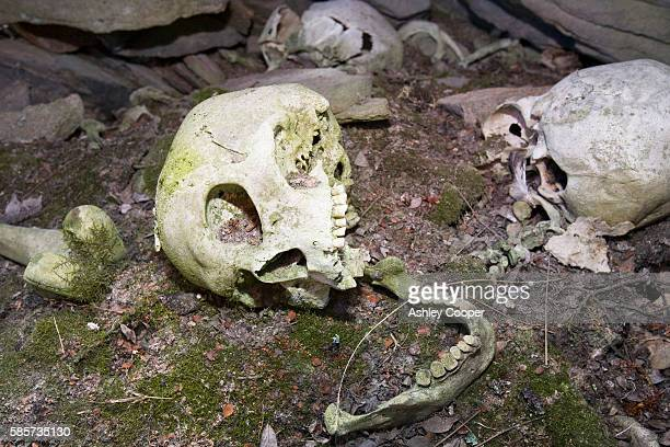 a human inuit skull in a stone chambered cairn in ilulissat in greenland. these ancient graves are pre christian and are at least 2000 years old - archaeology stock pictures, royalty-free photos & images