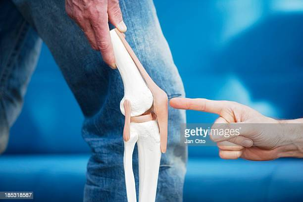 human knee joint - osteoarthritis stock photos and pictures