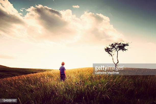 human on landscape - catherine macbride stock pictures, royalty-free photos & images