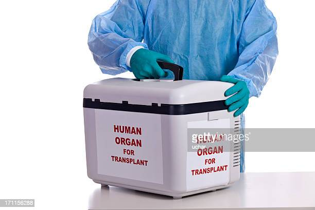 human organ for transplant - organ donation stock photos and pictures
