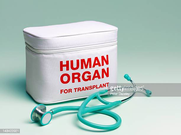 Human organ transplant bag and stethoscope