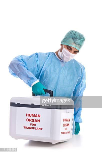 Trapianto di organo umano