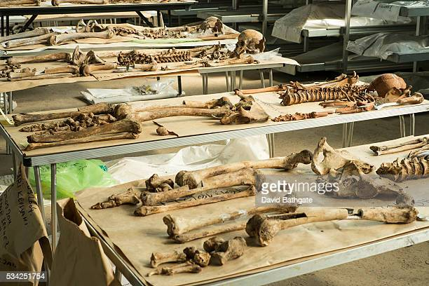 Human skeletal remains removed from a mass grave dating to the Bosnia war await final identification at the Municipality of Sanski Most special...