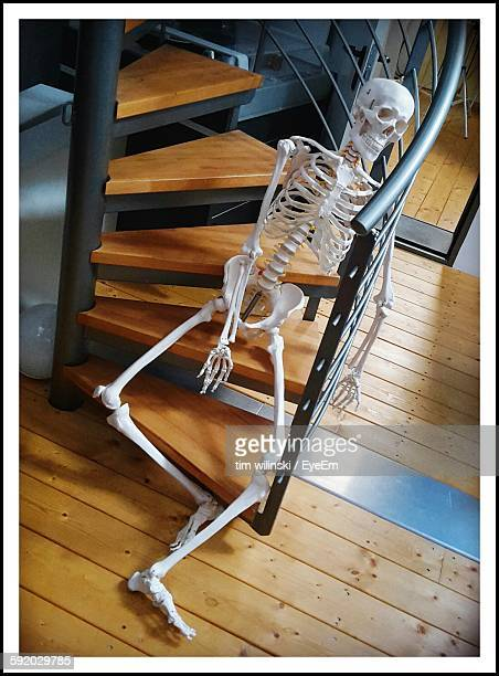 human skeleton on staircase - transfer image stock pictures, royalty-free photos & images