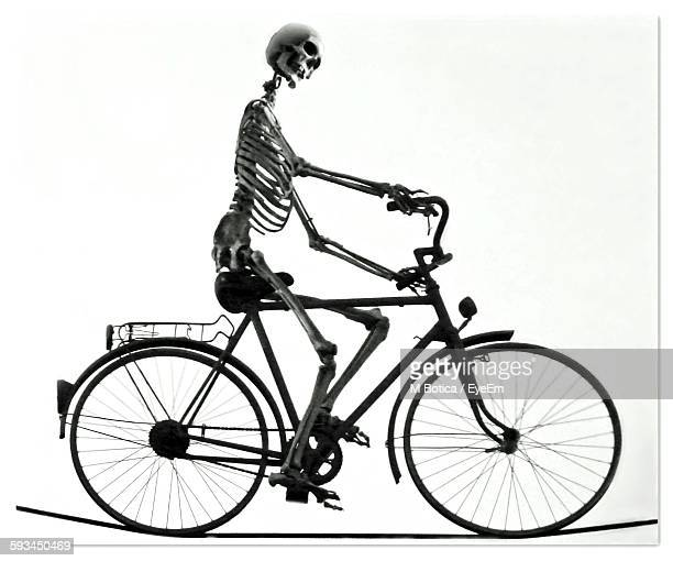 human skeleton riding bicycle on rope against white background - funny skeleton stock photos and pictures