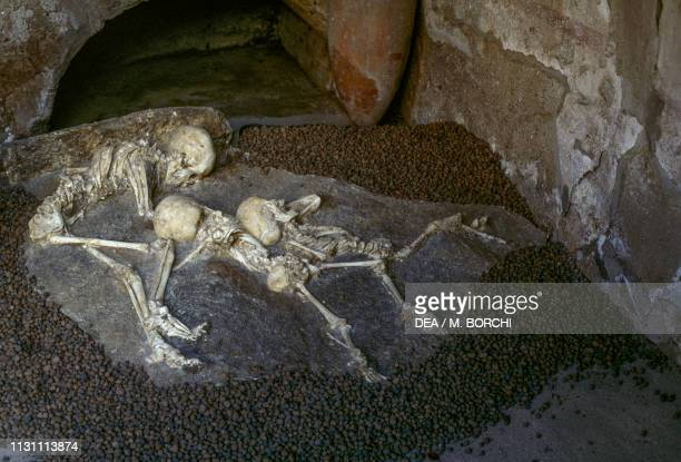 Human skeletons found in the House of Neptune and Amphitrite, Herculaneum , Campania, Italy, Roman civilization, 1st century.