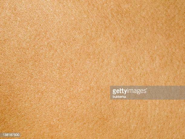 human skin - human skin stock pictures, royalty-free photos & images