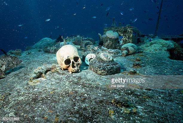 human skull on shipwreck - lagon chuuk photos et images de collection