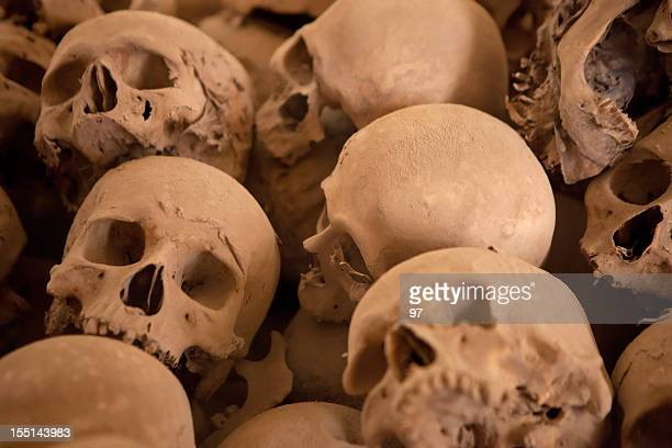 human skull on the layer of dust - hell stock pictures, royalty-free photos & images