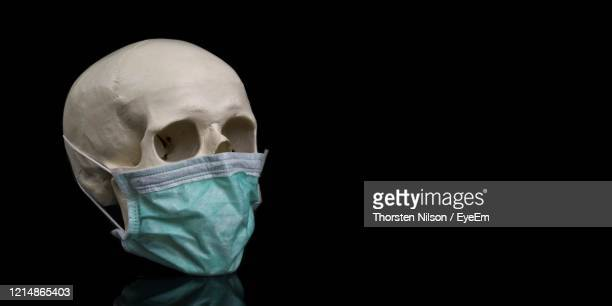 human skull wearing a protective mouth mask. panoramic image with copy space. - seitenblick stock-fotos und bilder