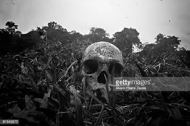 A human skull which a group of antiguerrilla police were using to play soccer with inside a village