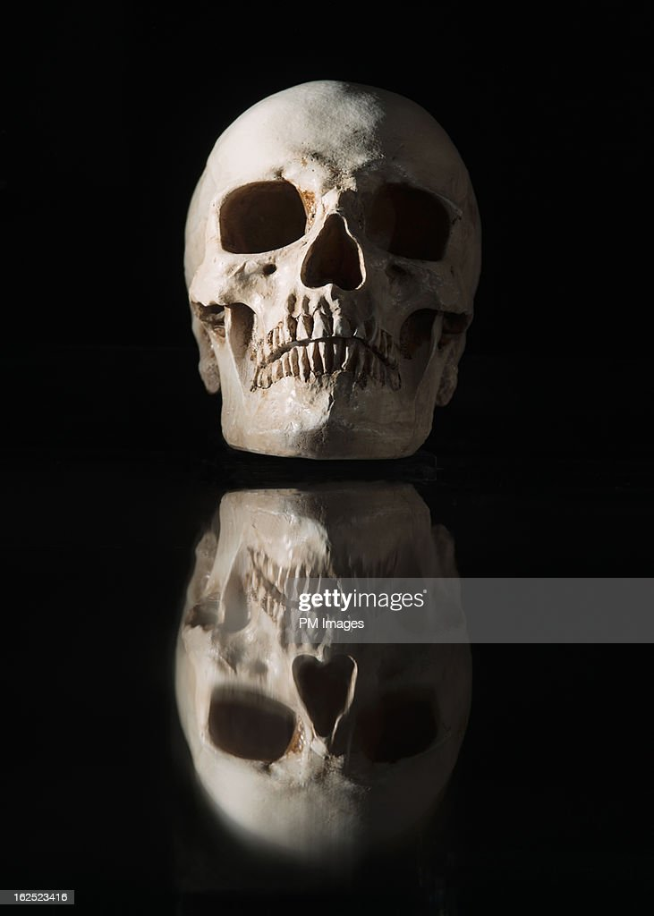 Skull Stock Photos and Pictures | Getty Images