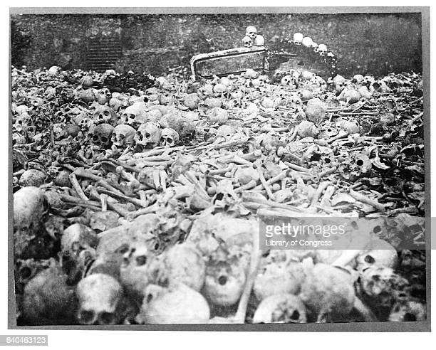 Human skulls and bones dredged from Havana Harbor and dumped in Cemetario de Colon after the Spanish American War.