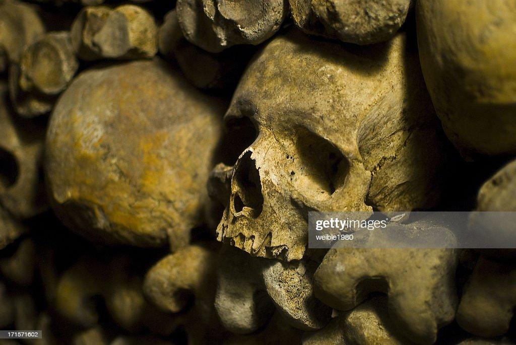 "Human Skulls in ""Le Catacombs"" Paris : Stock Photo"