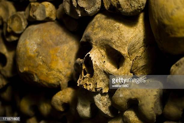 "Human Skulls in ""Le Catacombs"" Paris"