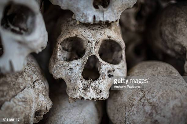 Human skulls of the enemies of the Konyak tribe warrior Nagaland