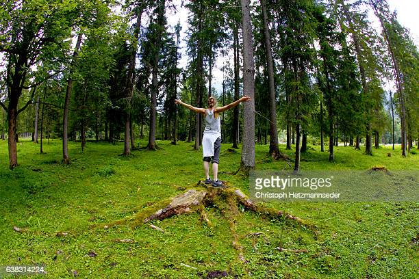 human tree - wide angle stock pictures, royalty-free photos & images