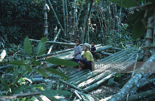 Humanitarian commandos Karen State A family of refugees is building a temporary shelter in the jungle