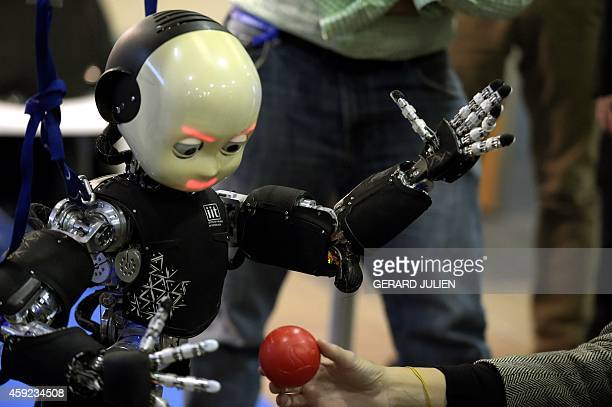 Humanoid robot iCub eyes a plastic ball as he is on display during the 2014 IEEERAS International Conference on Humanoid Robots in Madrid on November...