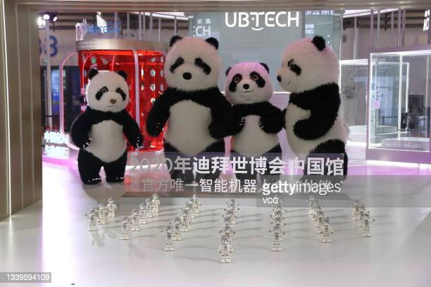 Humanoid robots and panda robots are on display at the booth of UBTech Robotics Inc. During 2021 World Robot Conference at Beijing Etrong...