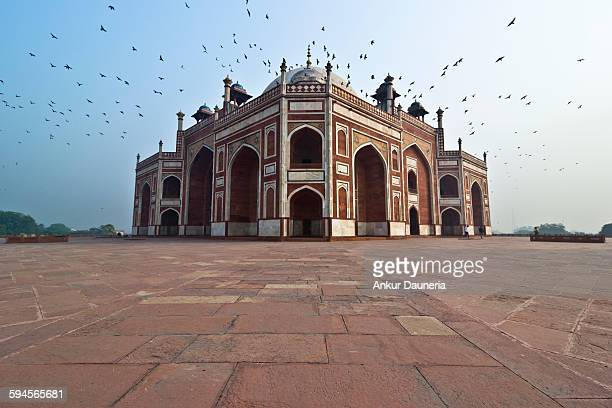 humayun's tomb - delhi stock pictures, royalty-free photos & images